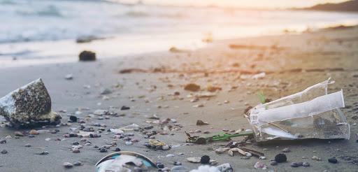 El impacto de la basura en el medio ambiente
